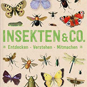 Abbildung Insekten & Co – Entdecken, Verstehen, Mitmachen